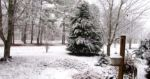 White Christmas in Alabama
