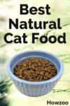 Best Natural Cat Food