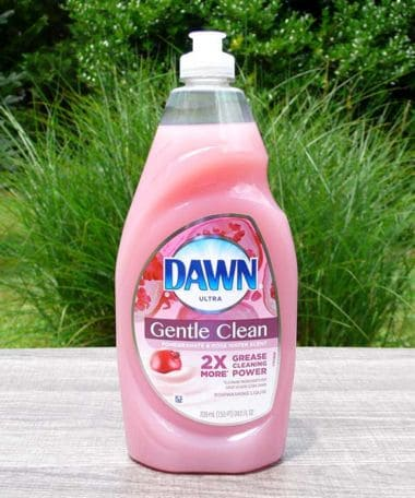 Dawn Ultra Gentle Clean Pomegranate Rose Water Scent Dishwashing Liquid