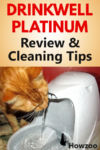 Drinkwell Platinum Review & Cleaning Tips