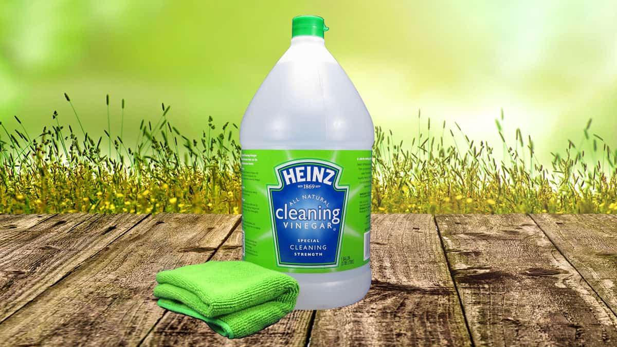 gallon of Heinz Cleaning Vinegar